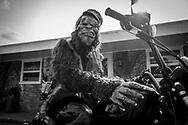 Bigfoot - Bigfoot Hideaway, Crystal Falls, MI