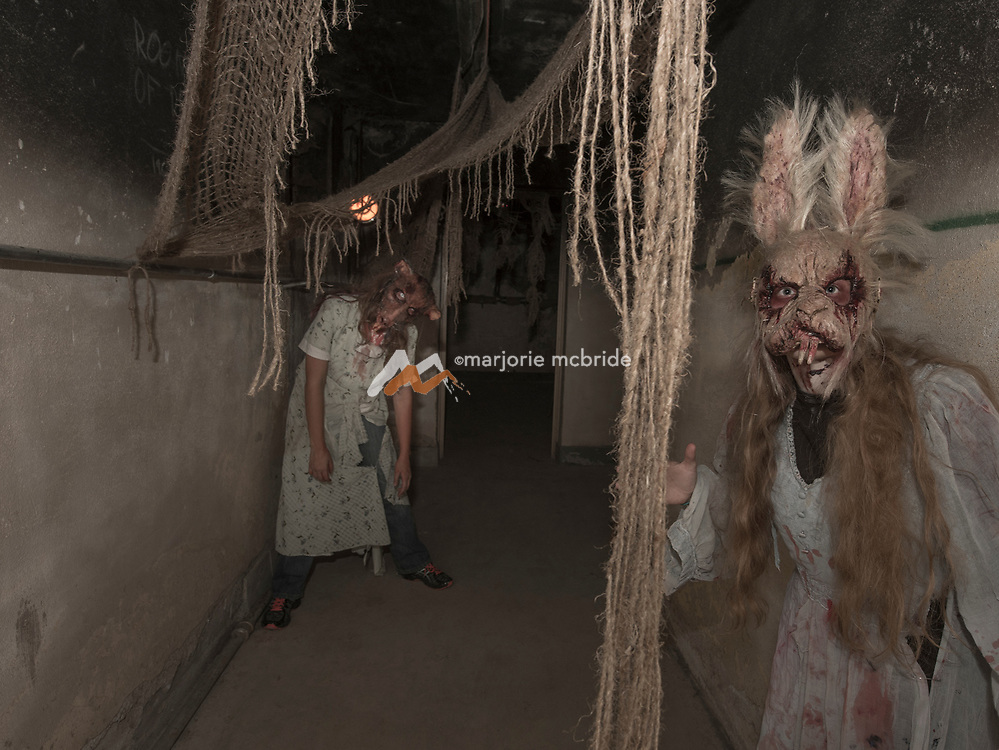 Inside the Creature House, The Haunted Mansion, Albion, Idaho.