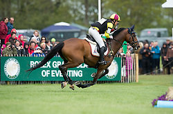 Blom Merel (NED) - Rumour Has It<br /> Cross Country - CCI4* <br /> Mitsubishi Motors Badminton Horse Trials 2014 <br /> © Hippo Foto - Jon Stroud