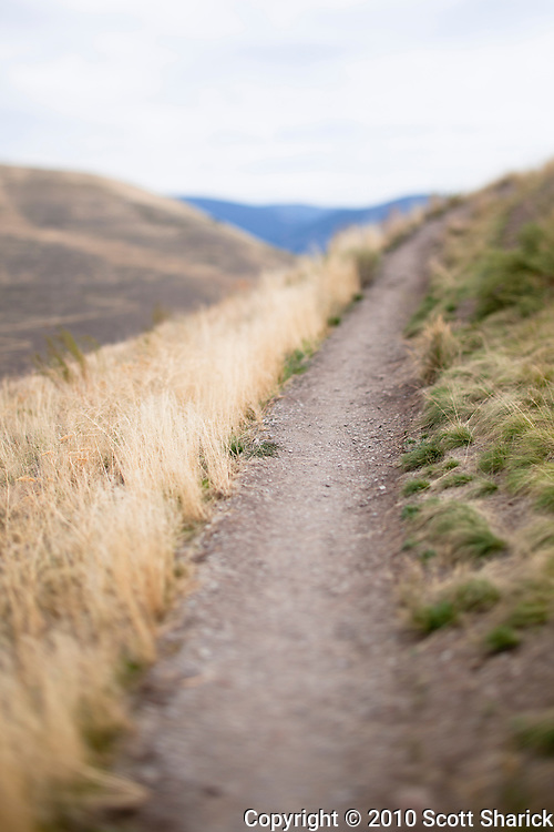 A dirt path leads upward in the hills of Montana. Image has a shallow depth of field. Missoula Photographer, Missoula Photographers, Montana Pictures, Montana Photos, Photos of Montana