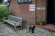 A pet dog awaits its voting owner for the UK 2017 general elections outside the polling station at St. Barnabas Parish Hall in Dulwich Village  on 8th June 2017, in London, England.