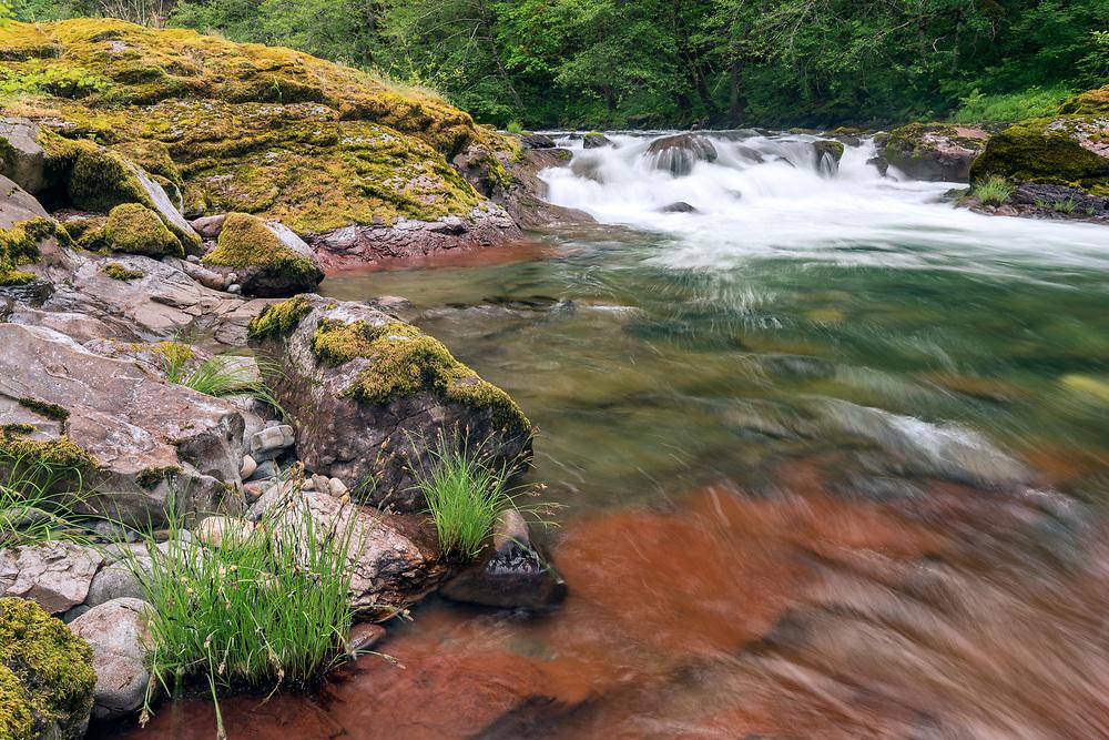 South Santiam River, Willamette National Forest, Oregon