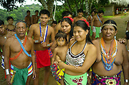Over the last quarter-century, a few Embera families pushed further north of Darien, settling in the jungles bordering the Chagres River -- a scant two-hour journey from cosmopolitan Panama City. Embera communities are scattered in this border wilderness, largely protected in national parks, including 318,000 acre Chagres National Park and adjoining 55,000 acre Soberania National Park.