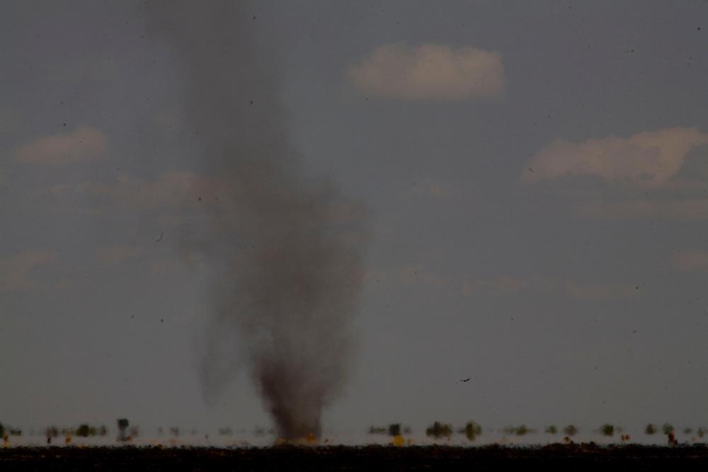 Chapada Gaucha_MG, Brazil.<br /> <br /> Terra plana e quente, combinada com o vento constante, produzia varios desses redemoinhos, verdadeiros tornados em Chapada Gaucha, Minas Gerais.<br /> <br /> Flat land and warm, combined with the constant wind, is producing several of these swirls in Chapada Gaucha, Minas Gerais.<br /> <br /> Foto: LEO DRUMOND / NITRO