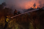 Firefighter splashes the water to the bushes caught on fire due to the wildfire occurred in Ojai, California. On Thursday, December 7th, 2017 at Maricopa Highway in Ojai, California. (Photo by Yuki Iwamura)