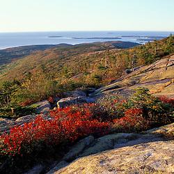 Acadia N.P., ME. New England Fall Cadillac Mountain