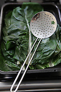 steamed Chard leaves