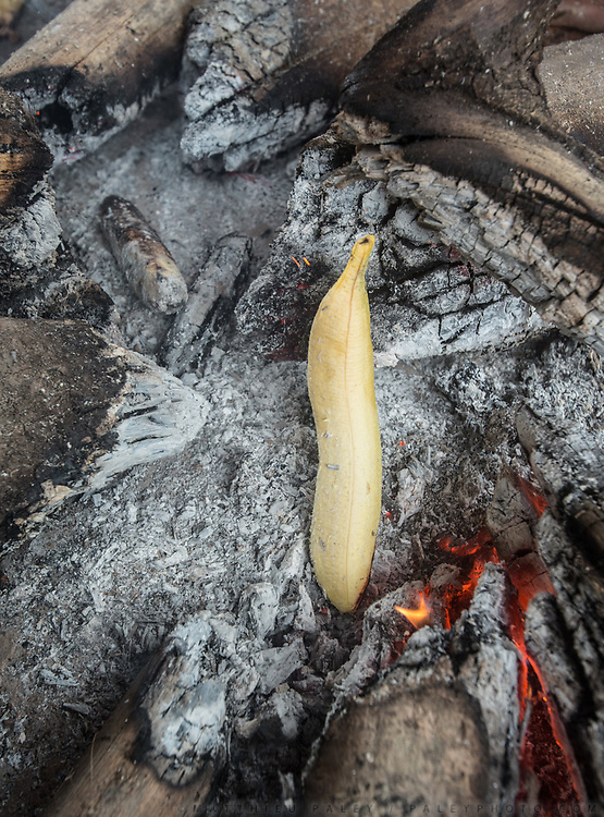 Cooking Plantain directly in the fire. Plantain are grown locally and fruit all year round, making them the all-season staple food of the Tsimane. The Nate family under the opened kitchen hut.