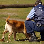 Duitse auto gevonden onder verdachte omstandigheden parkeerplaats Stichtse Strand Voorland Blaricum.politie, Gooi & Vechtstreek, KLPD, politiehond, speurhond, speurhondgeleider, zoeken, zoekactie, sporen