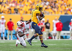 Sep 14, 2019; Morgantown, WV, USA; West Virginia Mountaineers wide receiver T.J. Simmons (1) catches a pass during the first quarter against the North Carolina State Wolfpack at Mountaineer Field at Milan Puskar Stadium. Mandatory Credit: Ben Queen-USA TODAY Sports