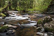 North Fork of Kanaka Creek at Kanaka Creek Regional Park in Maple Ridge, British Columbia, Canada