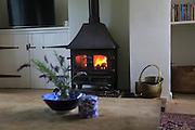 Domestic stove warm coal fire in domestic home, UK