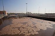 Nosedo, Milano : Impianto di depurazione delle acque reflue. Nella foto le vasche per l'ossidazione biologica e la decantazione.Nosedo Waste Water Treatment plant. Biological treatment and sedimentation.