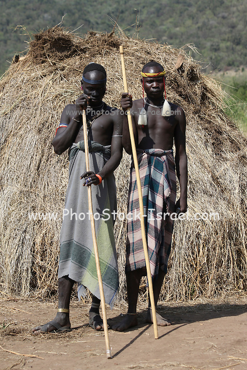 Africa, Ethiopia, Debub Omo Zone, woman of the Mursi tribe. A nomadic cattle herder ethnic group located in Southern Ethiopia, close to the Sudanese border. Two Mursi men