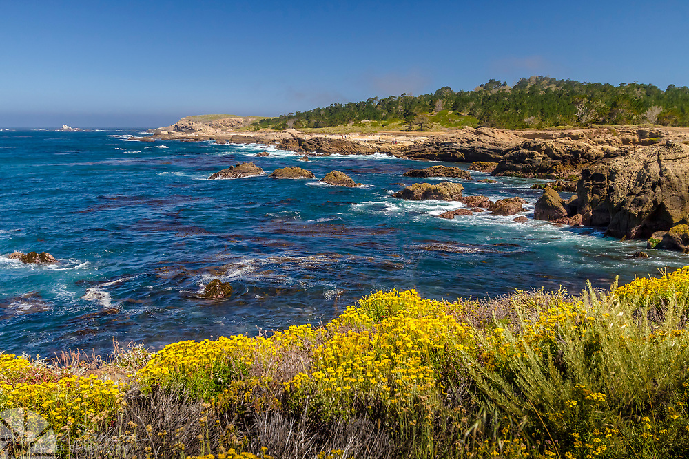 View towards Weston Beach at Point Lobos State Reserve, Carmel Coast, California