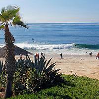 USA, California, San Diego. Windansea Beach in La Jolla.