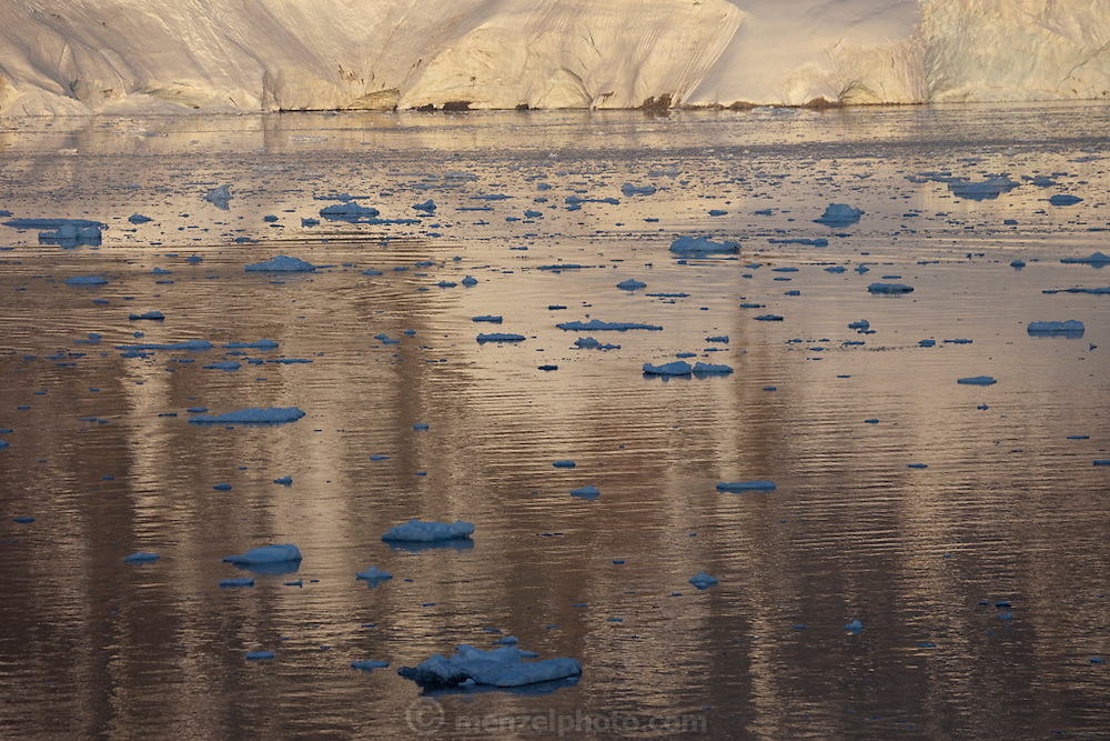 The setting sun casts a golden glare on the iceberg-littered waters of the Antarctic Peninsula, seven miles south of the Errera channel.