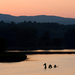 The West River at sunset in Brattleboro, Vermont.  Serpent sculpture.  A serpent sculpture lurks in the foreground.