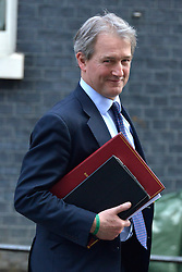 © Licensed to London News Pictures. 05/03/2013. Westminster, UK Environment Secretary Owen Paterson. Ministers after a Cabinet Meeting at number 10 Downing Street on 5th March 2013. Photo credit : Stephen Simpson/LNP