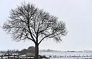 Nederland, Ubbergen, 13-1-2017De eerste sneeuw van deze winter is gevallen. Zicht op Persingen in de Ooijpolder bij NijmegenFoto: Flip Franssen
