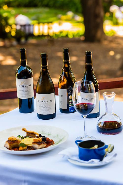 Lunch on terrace of Terroir Restaurant, Kleine Zalze Wines, Stellenbosch, Cape Winelands, South Africa.