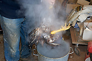 at home slaughtering of chicken dipped in hot water to pluck the feathers