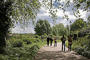 5 people walking along path in Hyde park, london in the sunshine