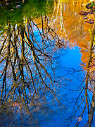 Fall serene reflections on Wyomissing Creek, Wyomissing, Berks Co., PA