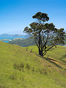 High-angle view from the Manaia Road on the Coromandel Peninsula, New Zealand