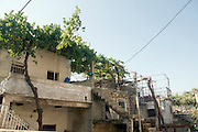 Israel, Upper Galilee, The Druze village of Peki'in a vine covered roof