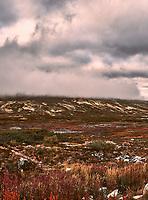 British Columbia Panorama from the Haines Highway. 3 of 4