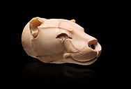 Fine Minoan translucent limestone lioness head shaped rhython from the  Knossos Palace Repositories 1600-1500 BC, Heraklion Archaeological  Museum, black background.<br /> <br /> This exquitely worked lioness head rhython has a hole in the muzzle for pouring liquid offerings. The nose and eyes were originally inlaid .<br /> <br /> If you prefer to buy from our ALAMY PHOTO LIBRARY  Collection visit : https://www.alamy.com/portfolio/paul-williams-funkystock/minoan-art-artefacts.html . Type -   Heraklion   - into the LOWER SEARCH WITHIN GALLERY box. Refine search by adding background colour, place, museum etc<br /> <br /> Visit our MINOAN ART PHOTO COLLECTIONS for more photos to download  as wall art prints https://funkystock.photoshelter.com/gallery-collection/Ancient-Minoans-Art-Artefacts-Antiquities-Historic-Places-Pictures-Images-of/C0000ricT2SU_M9w
