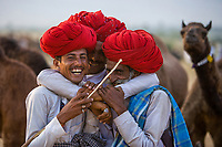 """Camel Herders at the Pushkar Fair, also called the Pushkar Camel Fair or locally as Kartik Mela or Pushkar ka Mela, an annual multi-day livestock fair held in the town of Pushkar (Rajasthan, India) It is one of India's largest camel fairs.<br /> Available as Fine Art Print in the following sizes:<br /> 08""""x12""""US$   100.00<br /> 10""""x15""""US$ 150.00<br /> 12""""x18""""US$ 200.00<br /> 16""""x24""""US$ 300.00<br /> 20""""x30""""US$ 500.00"""