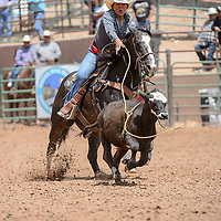 Renee Tolino gets a clean rope around the calf for a score of 4.97 at the Gallup Inter-Tribal Ceremonial Rodeo at Red Rock Park Friday.