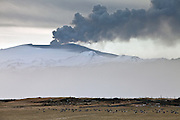 Eyjafjalljökull erupting on the south coast of Iceland. In foreground is a flokk of Greylag Gesse, just arrived to Iceland from Britten