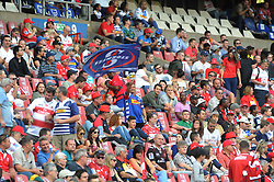 070418 Emirates Airlines Park, Ellis Park, Johannesburg, South Africa. Super Rugby. Lions vs Stormers. A Stormers fan waves a flag during the game. <br />Picture: Karen Sandison/African News Agency (ANA)