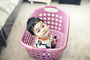 Nico in the laundry basket.<br /> photo by Jason Doiy