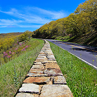 """""""Skyline Drive in Spring""""<br /> <br /> Beautiful Skyline Drive in Shenandoah National Park during spring!!<br /> <br /> The Blue Ridge Mountains by Rachel Cohen"""