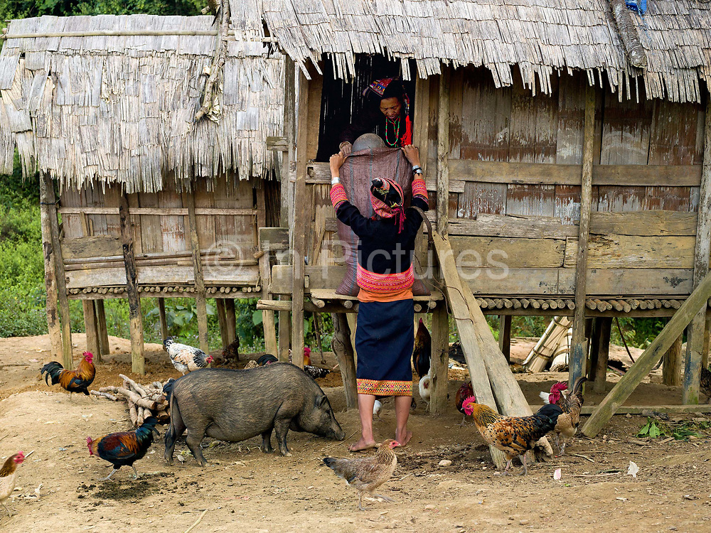 In the Ko Pala village of Ban Honglerk, each family has a rice store in the village for keeping the rice for use during the coming year, Phongsaly province, Lao PDR