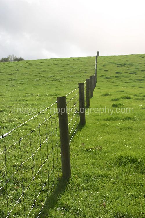 Fields, Kilkenny, Ireland