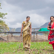 INDIVIDUAL(S) PHOTOGRAPHED: Sonali Tulpule (left) and Renuka Tulpule (right). LOCATION: Ahirwade, Maharashtra, India. CAPTION: Sonali (left) and Renuka (right) tend to a small plot of land on their family farm. While many people across India are heavily dependent on chemical fertilisers, Sonali and Renuka's family are able to use bio-slurry, a by-product from the biogas unit they recently had installed by Sistema Biobolsa. This simple technology ferments organic waste and turns it into methane gas, which the family is then able to use instead of firewood for cooking.