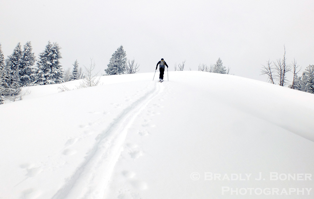 Cory Hatch skins along a ridgeline during a backcountry ski excursion Sunday morning in the Big Hole Mountains west of Teton Valley. Steady snow is expected in the extended forecast through the weekend.