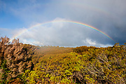 A bright rainbow stretches across a forested valley in Egmont National Park located in the Taranaki District on the North Island of New Zealand.