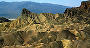 Desert environment, Death Valley national park, California, USA Zabriskie Point, Death Valley national park, California, USA