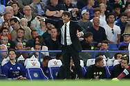 Antonio Conte, the Chelsea manager shouting at his players from the touchline. Premier league match, Chelsea v West Ham United at Stamford Bridge in London on Monday 15th August 2016.<br /> pic by John Patrick Fletcher, Andrew Orchard sports photography.