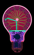 X-ray of an energy efficient light bulb. This buld uses Light emmitting diode (LED) technology. THis is a false color x-ray.
