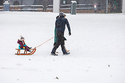 In Utrecht wordt een meisje door haar ouders voortgetrokken op de slee. Nederland geniet van de eerste sneeuw sinds lange tijd.<br /> <br /> In Utrecht a girl is carried on a sled by her parents. People in the Netherlands enjoy the first snow since years.