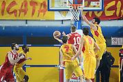 DESCRIZIONE : Frosinone LNP DNA Adecco Gold 2013-14 Veroli Imola<br /> GIOCATORE : turel mirco<br /> CATEGORIA : tiro controcampo<br /> SQUADRA : Imola<br /> EVENTO : Campionato LNP DNA Adecco Gold 2013-14<br /> GARA : Veroli Imola<br /> DATA : 29/12/2013<br /> SPORT : Pallacanestro<br /> AUTORE : Agenzia Ciamillo-Castoria/ManoloGreco<br /> Galleria : LNP DNA Adecco Gold 2013-2014<br /> Fotonotizia : Frosinone LNP DNA Adecco Gold 2013-14 Veroli Imola<br /> Predefinita :