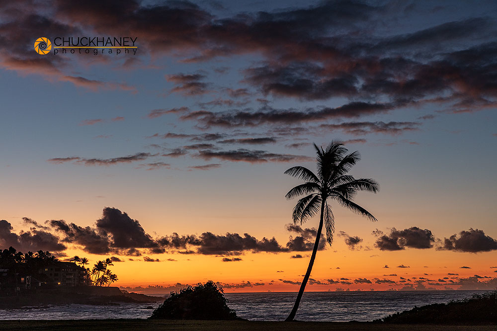 Coconut palm trees silhoutted against vivid sunrise clouds at Poipu Beach in Kauai, Hawaii, USA