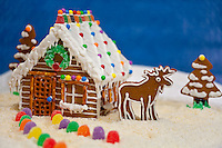 Still life of log cabin gingerbread house, moose and trees; gumdrops line path through coconut snow leading to the front door; blue background.